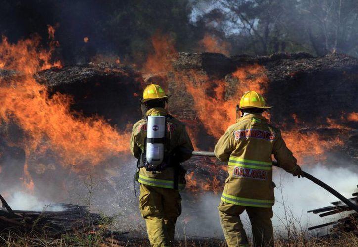 En lo que va del 2014 se han combatido 21 incendios en seis entidades del país. (Notimex)