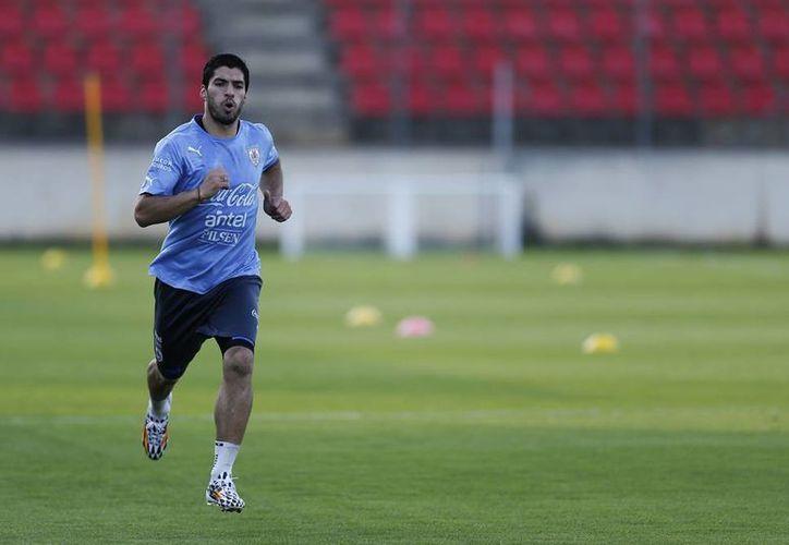 Luis Suárez, quien fue operado en mayo de la rodilla izquierda, entrenó ligero y al margen de sus compañeros de la selección uruguaya. (AP)