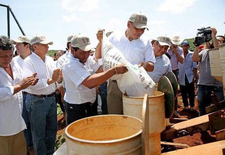 El gobernador, Rolando Zapata Bello, entregó semillas de soya a productores del sur del Estado. (yucatan.gob.mx)