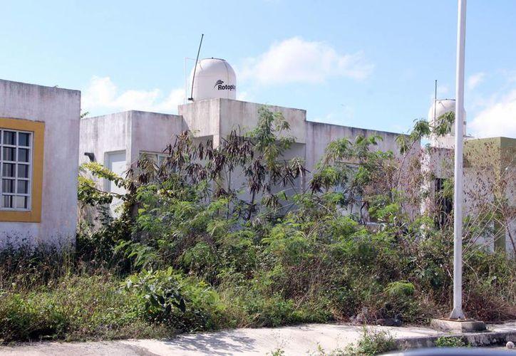 Muchos predios en la ciudad de Mérida permanecen abandonados. (Milenio Novedades)