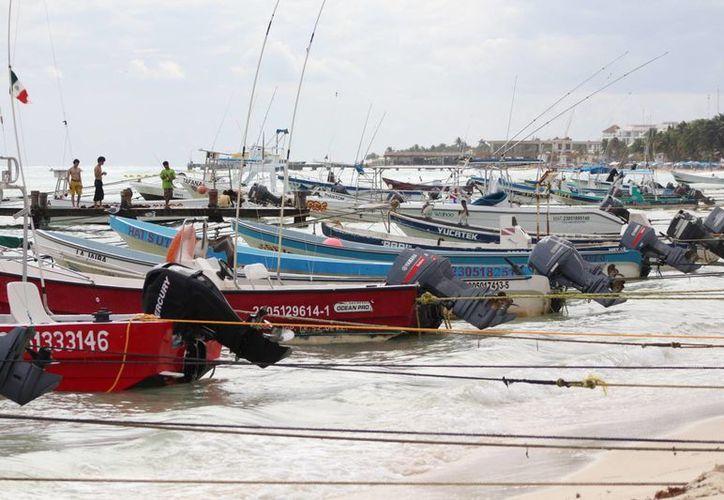 Solidaridad pedirá motores para para los integrantes de las cooperativas turísticas náuticas. (Adrián Barreto/SIPSE)
