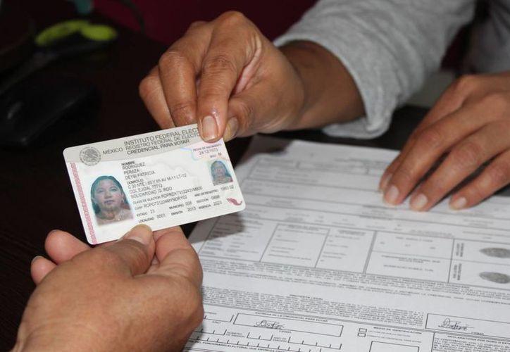 Las micas se estrenarían en las elecciones del 2015. (Adrián Barreto/SIPSE)