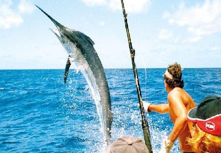 Quintana Roo, con una belleza inigualable, representa un gran escenario geográfico para la pesca deportiva. (Redacción)