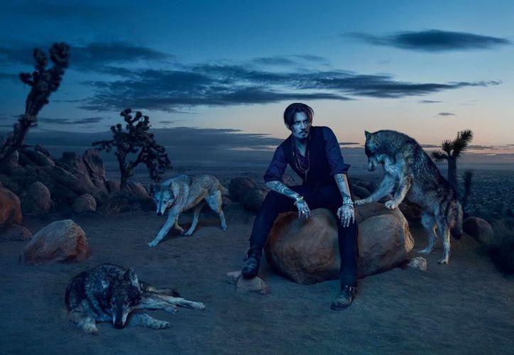 El lobo solitario de Dior