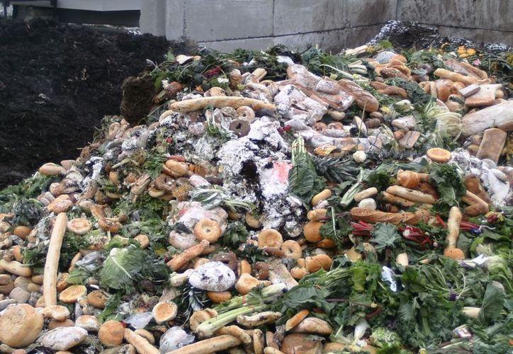 Buscan la reducción urgente del desperdicio. (Internet)
