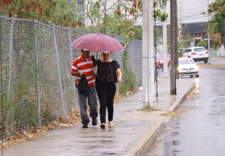 Se mantendrá el potencial para lluvias con intervalos de chubascos en el oriente, centro y noroeste de Yucatán. (Jorge Acosta/Milenio Novedades)