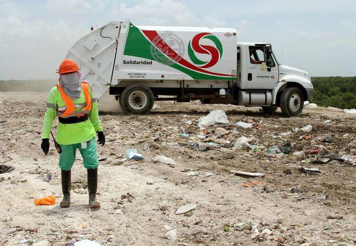 La planta ocupará 10 de las 45 hectáreas que están proyectadas para el relleno sanitario. (Adrián Barreto/SIPSE)