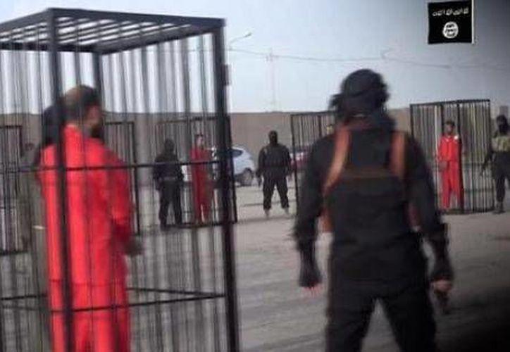 El video que difundió el Estado Islámico no muestra amenazas explícitas contra los combatientes peshmergas kurdos que mantenían enjaulados. (ecuavisa.com)