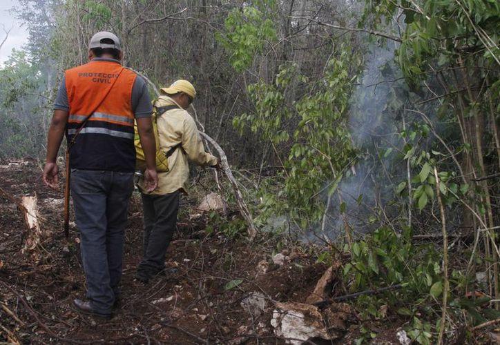 Los elementos del Centro Estatal de Control de Incendios Forestales continúan en labores de combate. (Victoria González/SIPSE)
