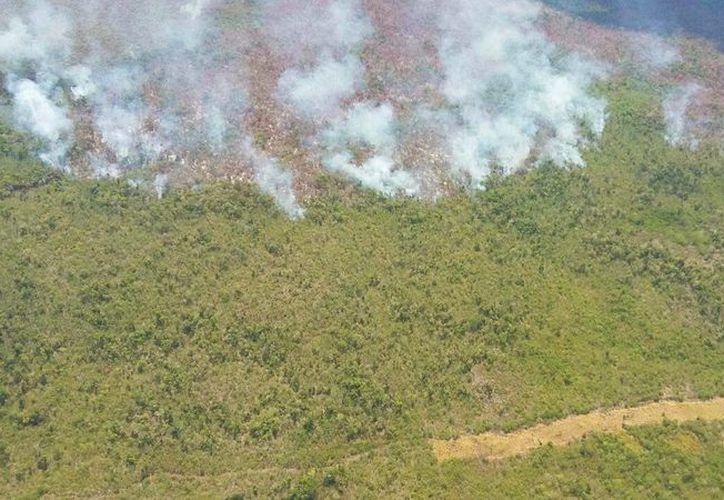 Se esperan lluvias durante este fin de semana que ayudarían a combatir los incendios forestales. (Edgardo Rodríguez/SIPSE)