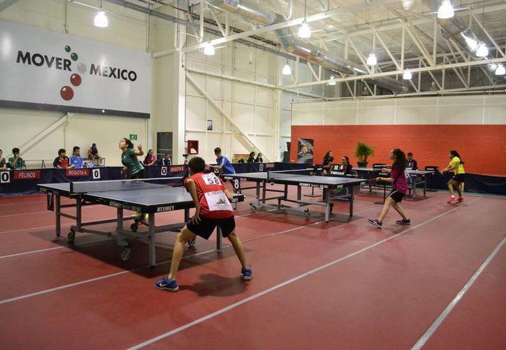 Ayer comenzó la liga yucateca de tenis de mesa en el multigimnasio Kukulcán. (SIPSE)