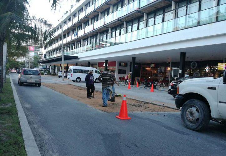 Protección Civil informó que no representa riesgos para los vehículos que cotidianamente transitan por la zona. (Daniel Pacheco/SIPSE)
