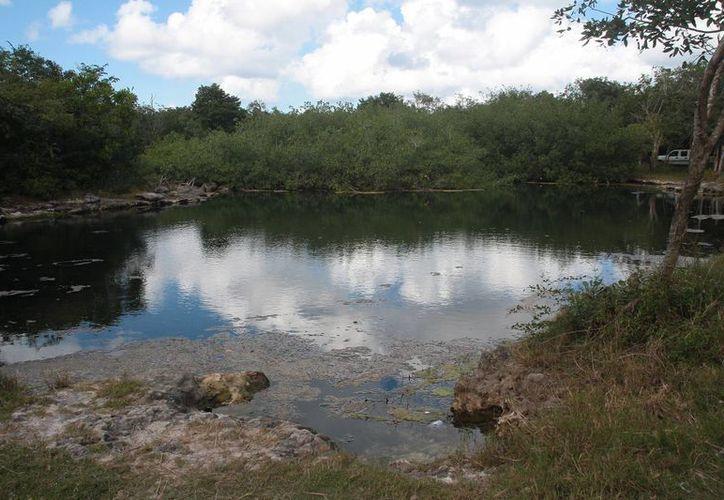 El manto acuífero de Cozumel tiene extremadamente alta vulnerabilidad al deterioro.  (Julián Miranda/SIPSE)