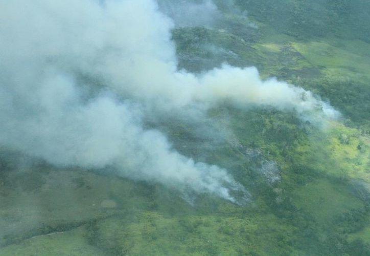 La temporada de incendios de 2016 en Quintana Roo es considerada 'atípica' por la Conafor. (Edgardo Rodríguez/SIPSE)