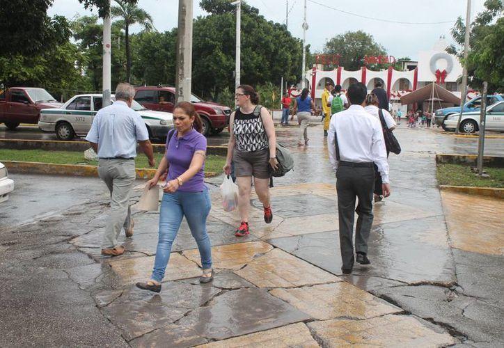 Ciudadanos abusan y caminan hasta más lento en los pasos peatonales. (Hugo Zúñiga/SIPSE)