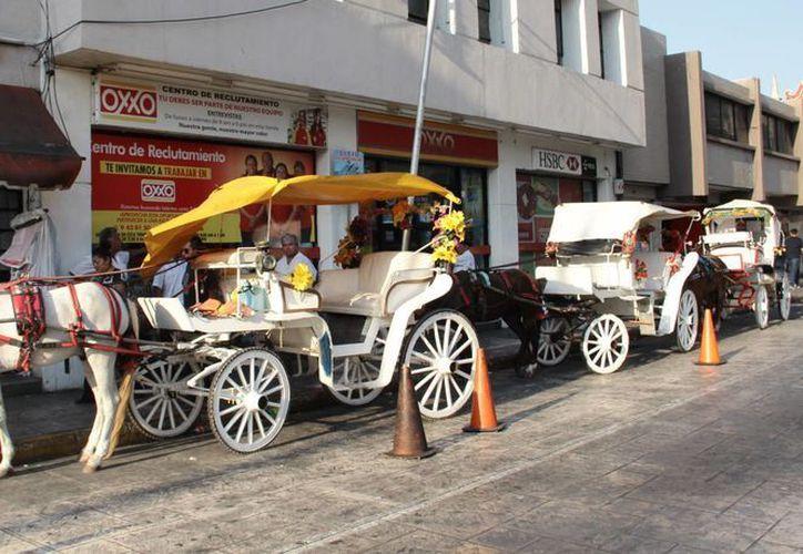 Los 'coches de caballo' son un atractivo para los visitantes en Mérida. (Milenio Novedades)