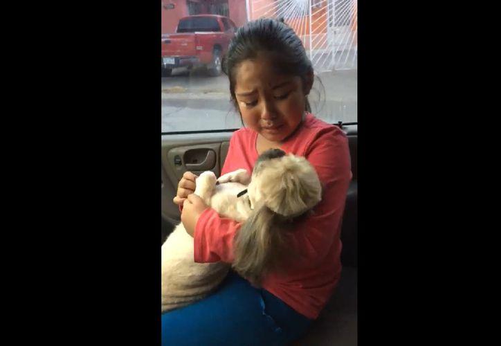 La mascota tenía un nuevo 'look' con menos pelo que de costumbre y esto aterró a la pequeña. (Foto: Captura de video)