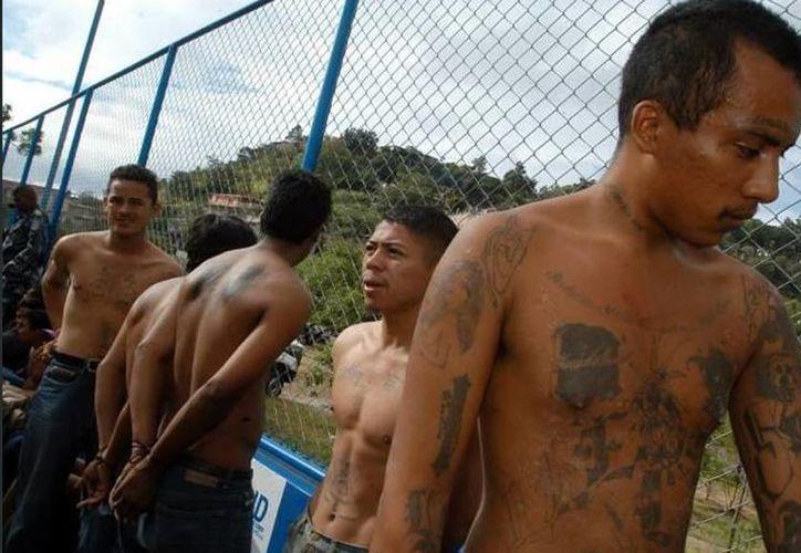 Los detenidos cobraban unos 10 mil dólares mensualmente desde hace dos años a los transportistas. (Archivo/EFE)