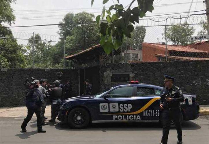 Los pitbulls permanecen en el Centro Canino de Coyoacán, de acuerdo con la Policía capitalina. (Excelsior)