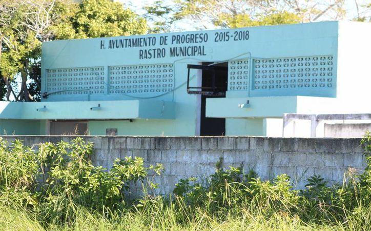 Tras la clausura del Rastro Municipal de Progreso, se desconoce cómo se evitará el desabasto de carne en la población. (Foto: Gerardo Keb/SIPSE)