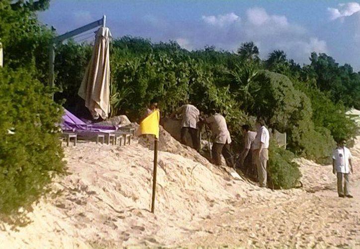 Se captó a trabajadores del hotel Paradisus realizando labores para ampliar más sus playas, sin permiso. (Daniel Pacheco/SIPSE)