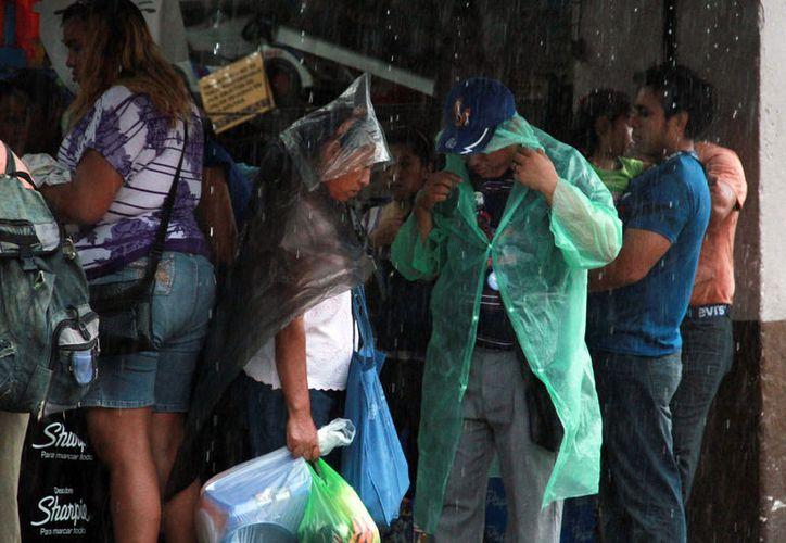 Las lluvias no dan tregua: se pronostican chubascos para este domingo y mañana lunes. (Jorge Acosta/SIPSE)
