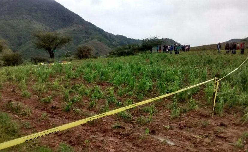Las autoridades confirmaron la muerte de tres mujeres y cuatro menores de edad al ser alcanzadas por un rayo, en la comunidad de Mesa Cuata, Guanajuato. (Foto Notimex)