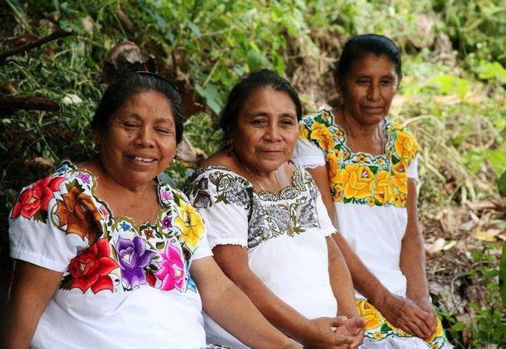 El Indemaya entregó spots de radio en maya al IMSS para ser difundidos en diversos municipios en los que hay personas mayahablantes. (Archivo/Sipse)