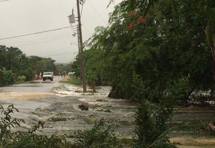 La colonia Los Cedros es la más afectada por la inundación; también la 10 de Septiembre, 16 de Septiembre y 20 de Noviembre. (Harold Alcocer/SIPSE)