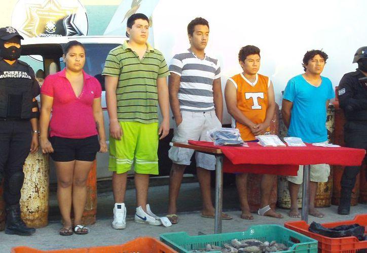 Los detenidos con pepino de mar intentaron sobornar sin éxito a la policía. (SIPSE)