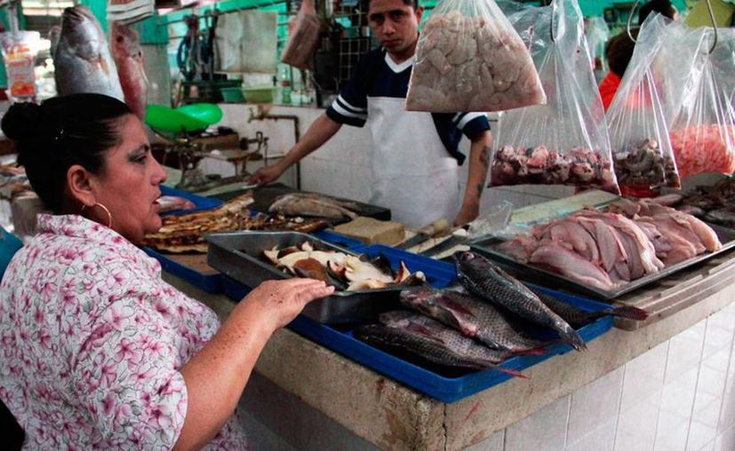 En Yucatán son comunes las alergias a los productos provenientes del mar. (Daniel Sandoval/Milenio Novedades)