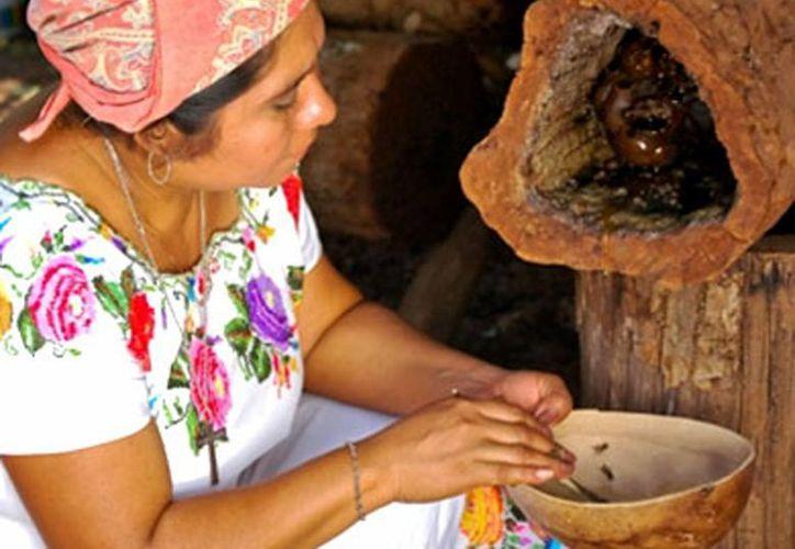 La producción de miel mediante la meliponicultura sigue vigente en la Península de Yucatán. (Milenio Novedades)