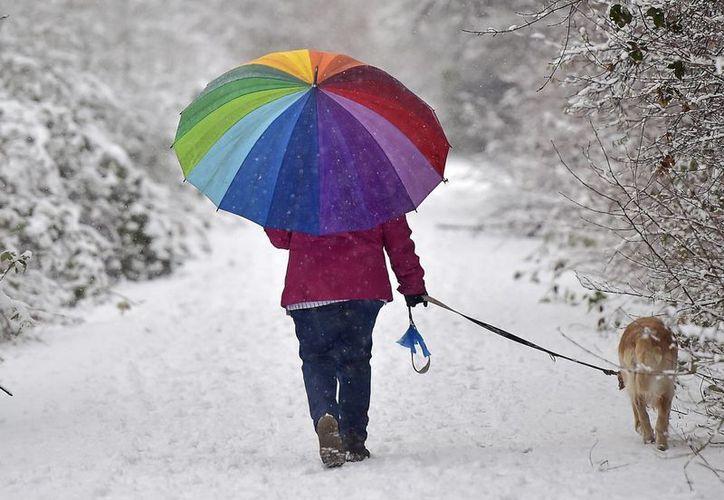 Una mujer pasea a su perro en medio de la nieve en Gelsenkirchen, Alemania. El oeste del país se ha visto seriamente afectado, sobre todo en cuanto a comunicaciones, debido a las nevadas. (Foto:AP)