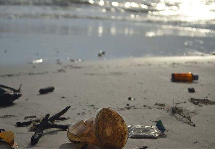 Unos 90 voluntarios recolectaron más de 200 kilogramos de desechos en la isla. (Foto: Contexto/Internet).