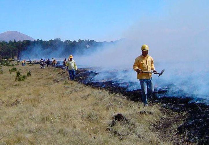 De acuerdo con Conafor, en las áreas forestales el país habitan 11 millones de personas. En la imagen, personal de la dependencia, en Michoacán, combate un incendio. (Conafor Michoacán)