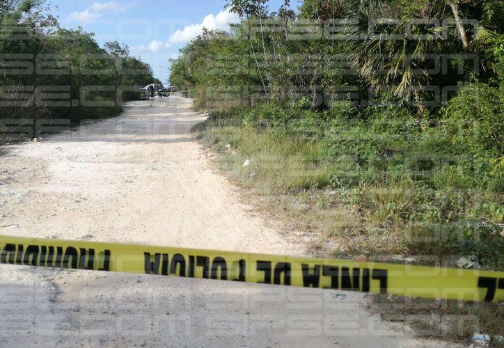Vecinos de la colonia Tres Reyes reportaron el hallazgo de un cuerpo sin vida en un camino de terracería. (Redacción/SIPSE)