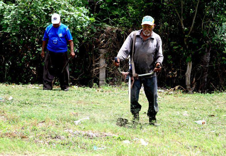 Brigadistas auxilian para evitar los criaderos de mosco y la pro¬palación del vector en zonas susceptibles como río Hondo y Bacalar. (Alejandra Carrión / SIPSE)