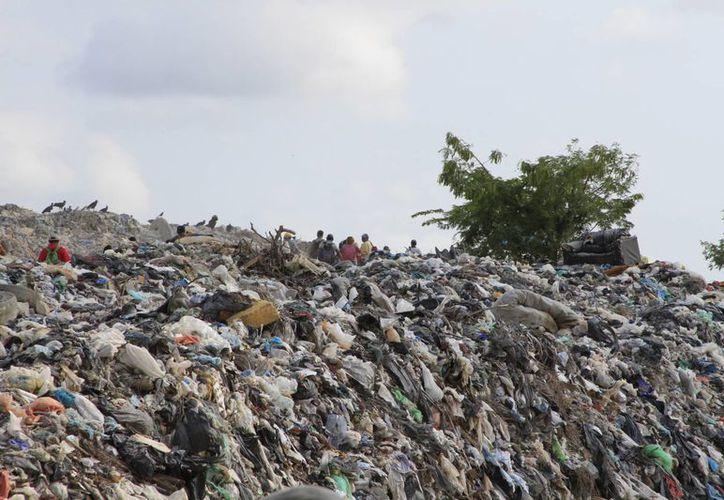 Se espera que el basurero intermunicipal entre en operación en tres semanas. (Ángel Castilla/SIPSE)