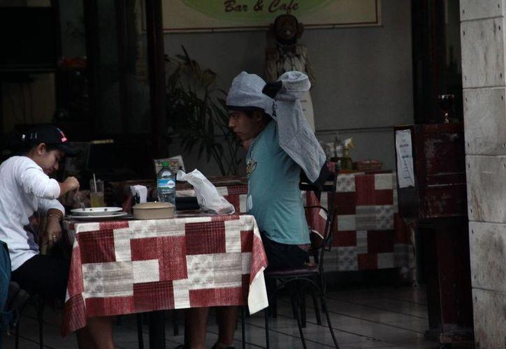 Durante las mañanas y las noches el termómetro alcanzaría hasta los 11 grados en Yucatán. (Milenio Novedades)