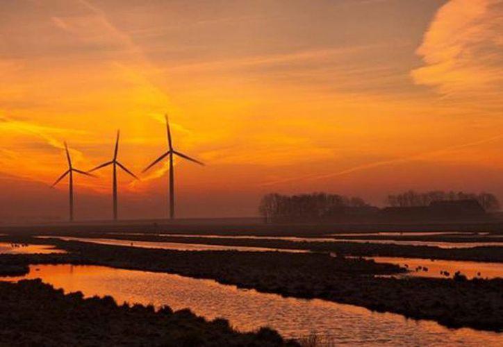 Los recursos de Portugal serán destinados a la creación de un parque eólico en Coahuila. (mexico2.com.mx)