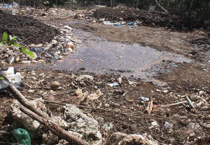 Inspección y Vigilancia de Ecología Municipal dijo que mientras los representantes del rancho presenten documento, ellos no pueden proceder a una clausura. (Redacción/SIPSE)