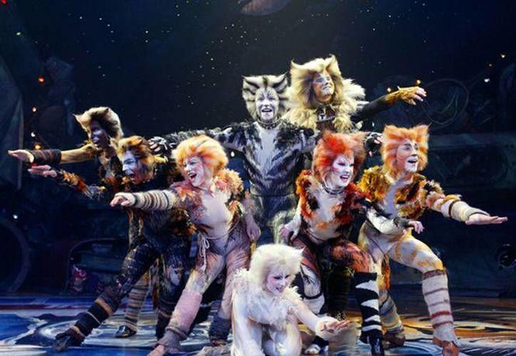 """La obra """"Cats"""" ha sido representada en más de 300 ciudades y en 10 idiomas diferentes. (Redacción/SIPSE)"""
