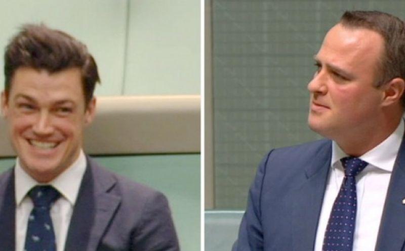 Diputado australiano pidió matrimonio a su novio durante discusión en el Parlamento