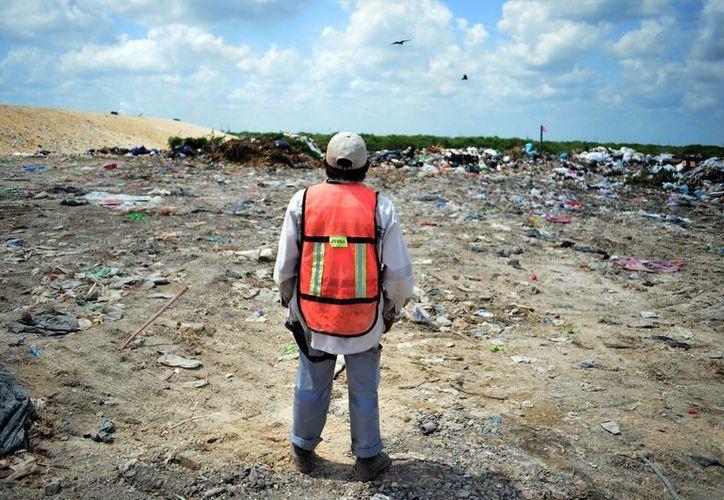 La basura separada se deposita en el relleno sanitario. Imagen de un trabajador en el lugar.  (Milenio Novedades)