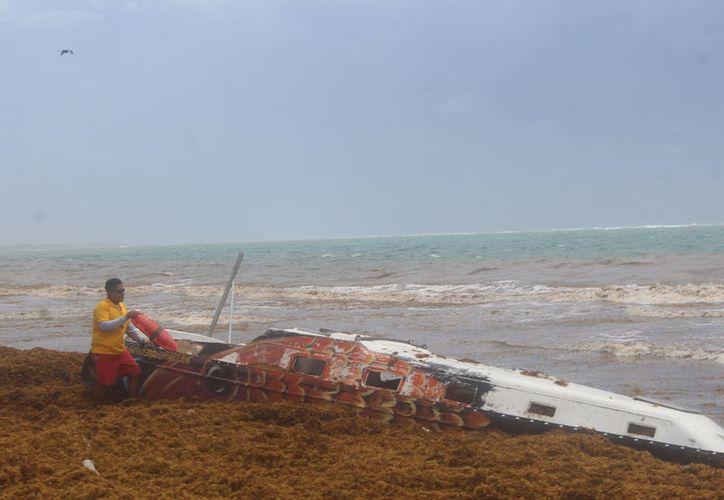 El velero se encuentra lleno de sargazo. (Sara Cauich/SIPSE)