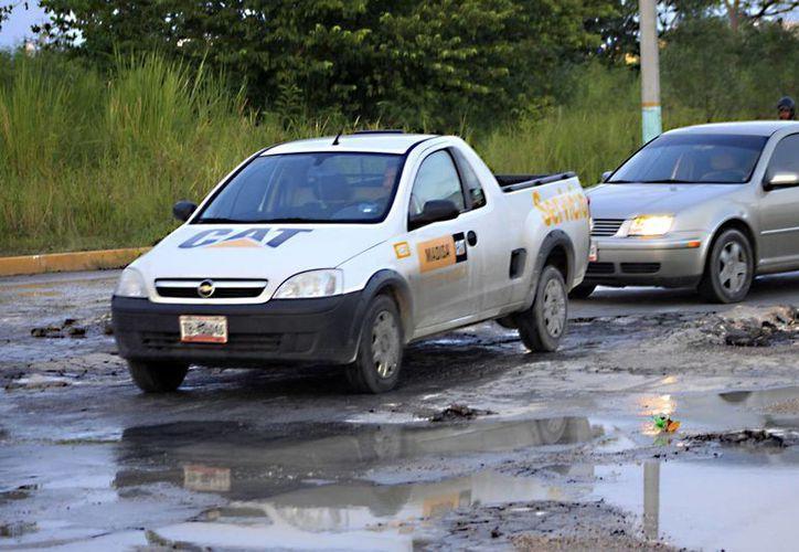 El 40% de las vialidades se encuentra en malas condiciones: al tener pavimentos muy delgados con cada lluvia se llenen de baches. (Harold Alcocer/SIPSE)