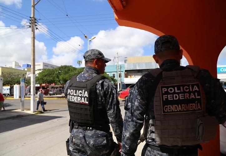 Serán desplegados en los estados de Colima, Baja California Sur, Chihuahua y Quintana Roo. (Archivo)