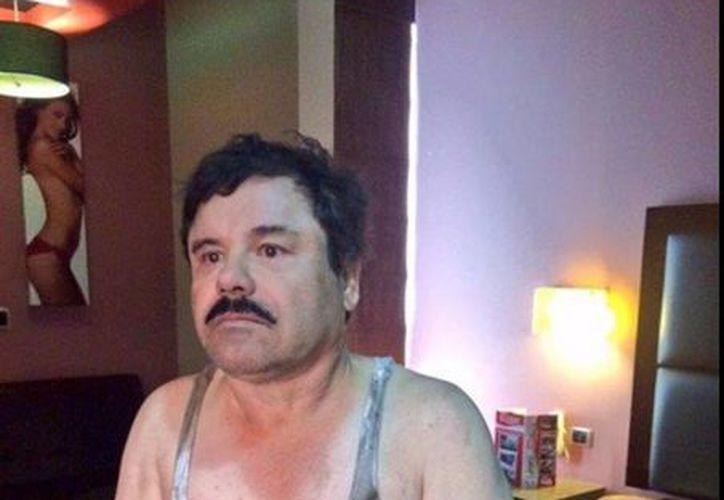 La OCDE aseguró que la recaptura de 'El Chapo' es un punto positivo para el gobierno de México. Imagen del momento en que el líder del cártel de Sinaloa fue detenido en los Mochis, Sinaloa. (twitter/@atandocabos1)