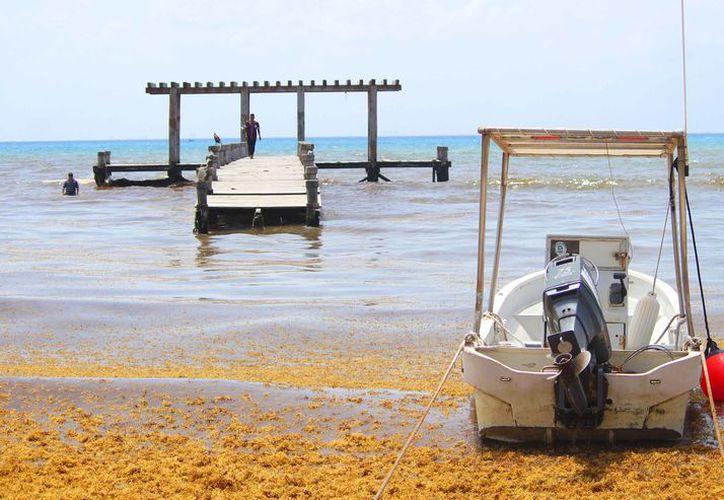 Trabajadores de la zona costera señalaron que nunca fue una estructura funcional. (Daniel Pacheco/SIPSE)