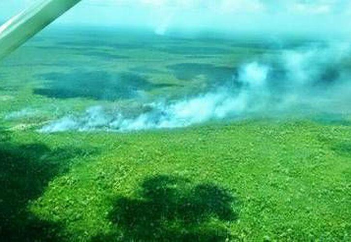 Los últimos reportes señalan 360 hectáreas consumidas. (Redacción/SIPSE)